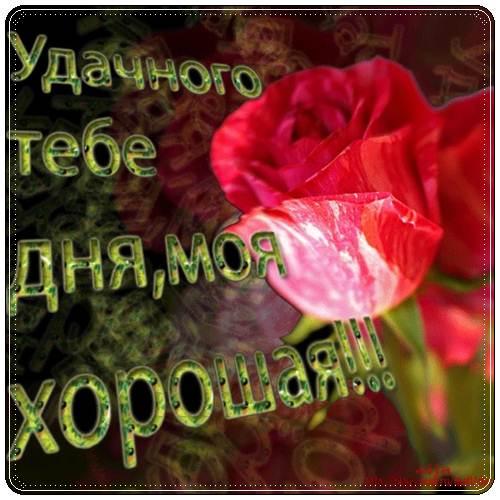 Как пожелать девушке хорошего дня на работе anna simonova