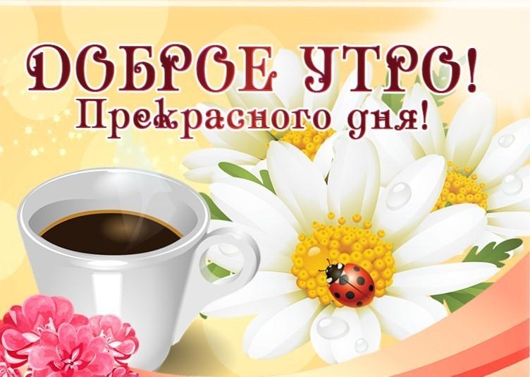 С добрым утром и хорошим днём пожелания своими словами
